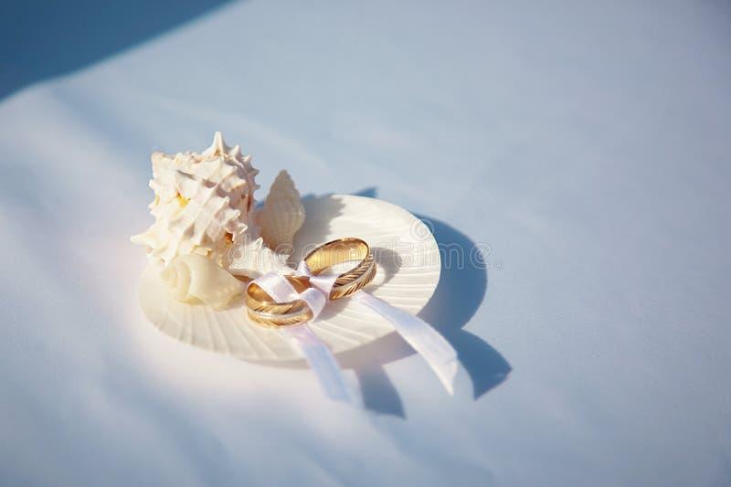 与圆环的白色壳,在海滩的婚礼那天 库存照片