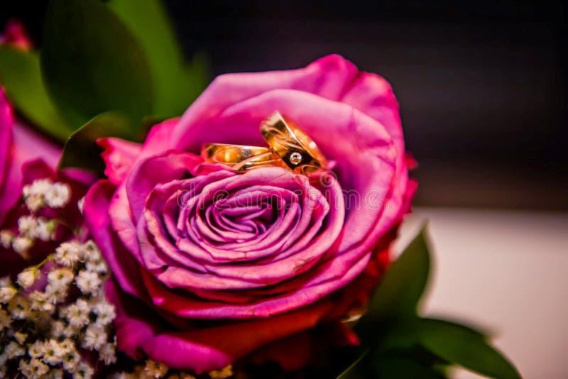 与圆环的美丽的花 免版税图库摄影