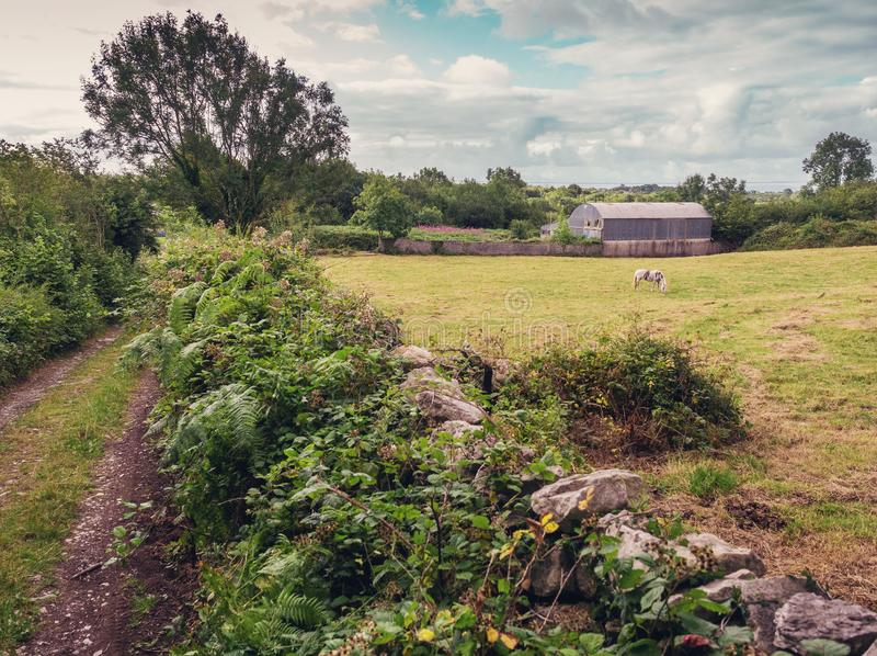 与圆的金属屋顶、绿色领域、小路和石篱芭的老农舍 E 免版税库存照片