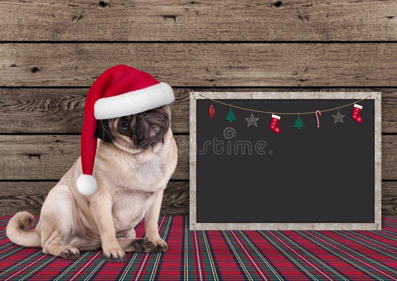 与圣诞老人帽子和黑板的逗人喜爱的圣诞节哈巴狗小狗在木背景 库存照片
