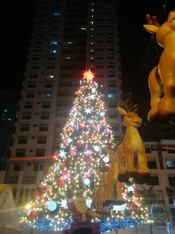 与圣诞老人的圣诞树有亲爱的 库存图片
