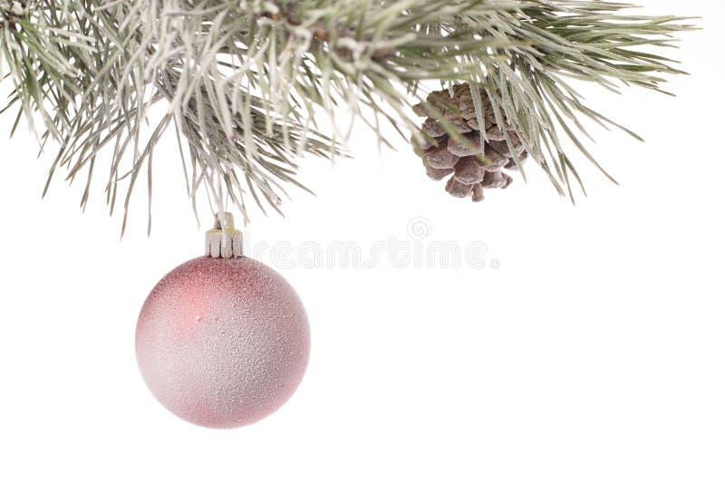与圣诞节玩具和爆沸的积雪的冷杉分支 图库摄影