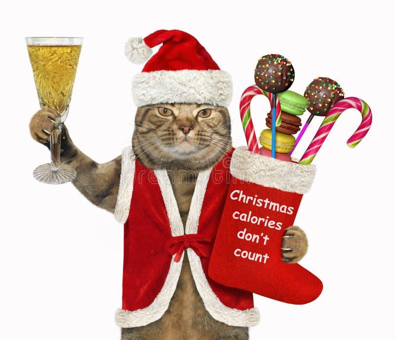 与圣诞节长袜的猫圣诞老人 免版税库存照片