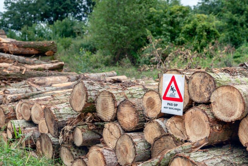 与在一被堆积的厚实的树trun附有的图钉的警报信号 免版税图库摄影