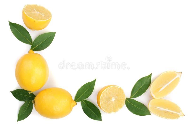 与在与拷贝空间的白色背景和切片的柠檬隔绝的叶子您的文本的 平的位置,顶视图 库存图片