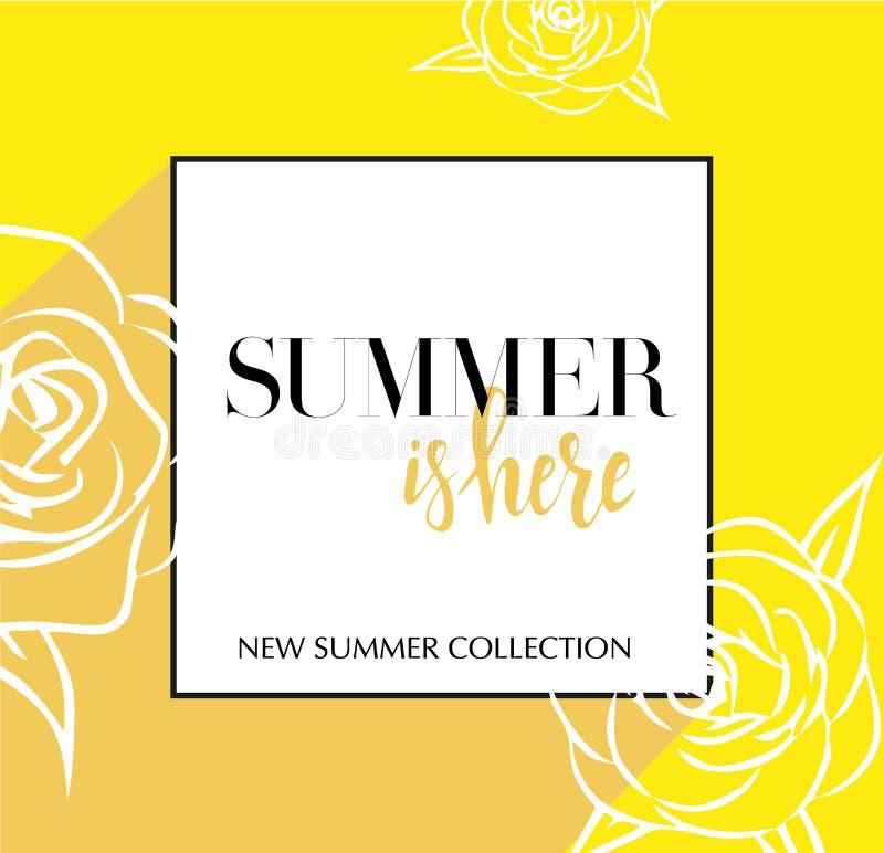 与在夏天上写字的设计横幅在这里商标 春季的黄牌与黑框架和wthite玫瑰 促进提议 皇族释放例证