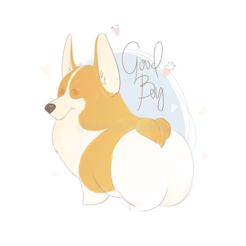 与在好男孩上写字的逗人喜爱的威尔士小狗 滑稽的传染媒介例证 一条狗的画象装饰和设计的 库存例证
