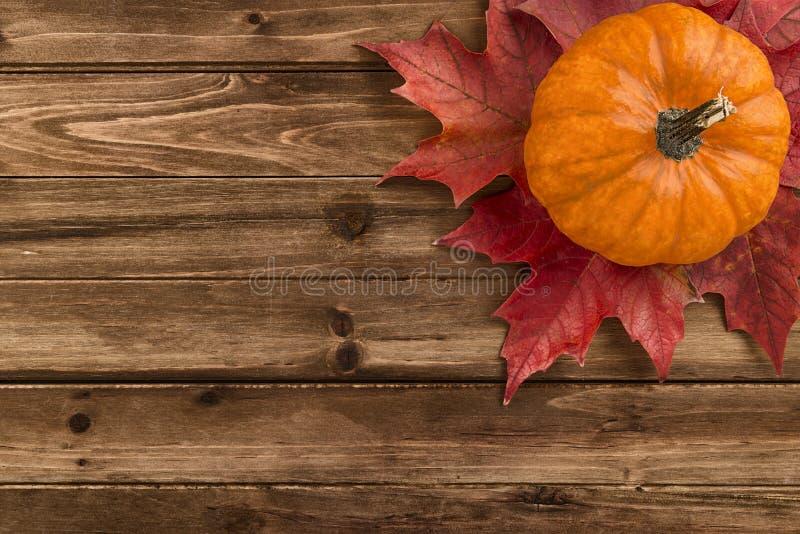 与在木桌上配置的红槭叶子的南瓜 免版税库存照片