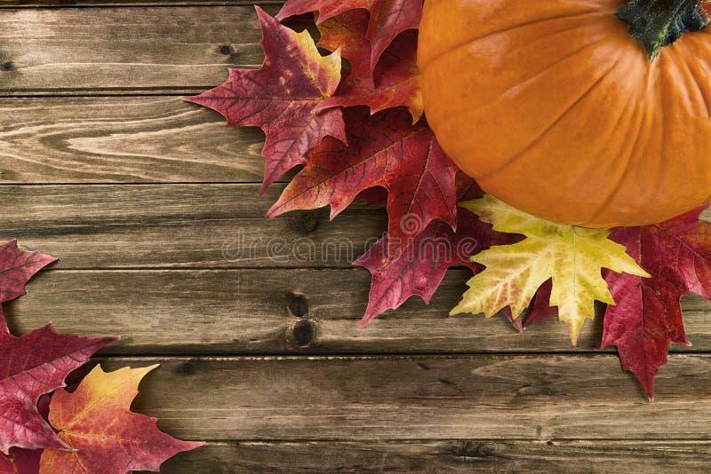 与在木桌上配置的红槭叶子的南瓜 库存照片