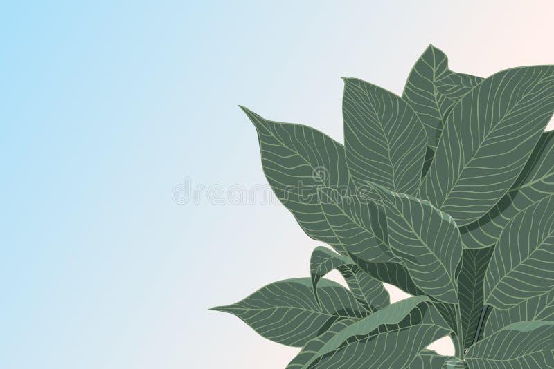 与在淡色背景隔绝的绿色叶子剪影的抽象传染媒介背景,平的位置 E 向量例证