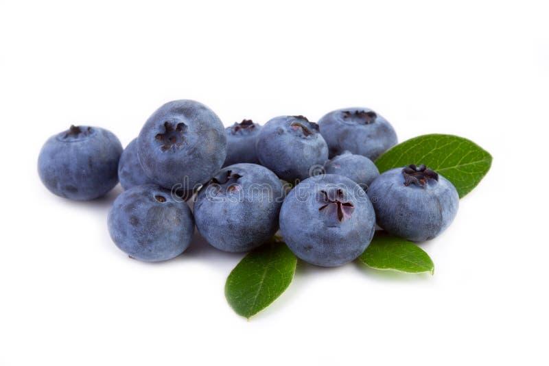 与在白色查出的叶子的新鲜的蓝莓 图库摄影