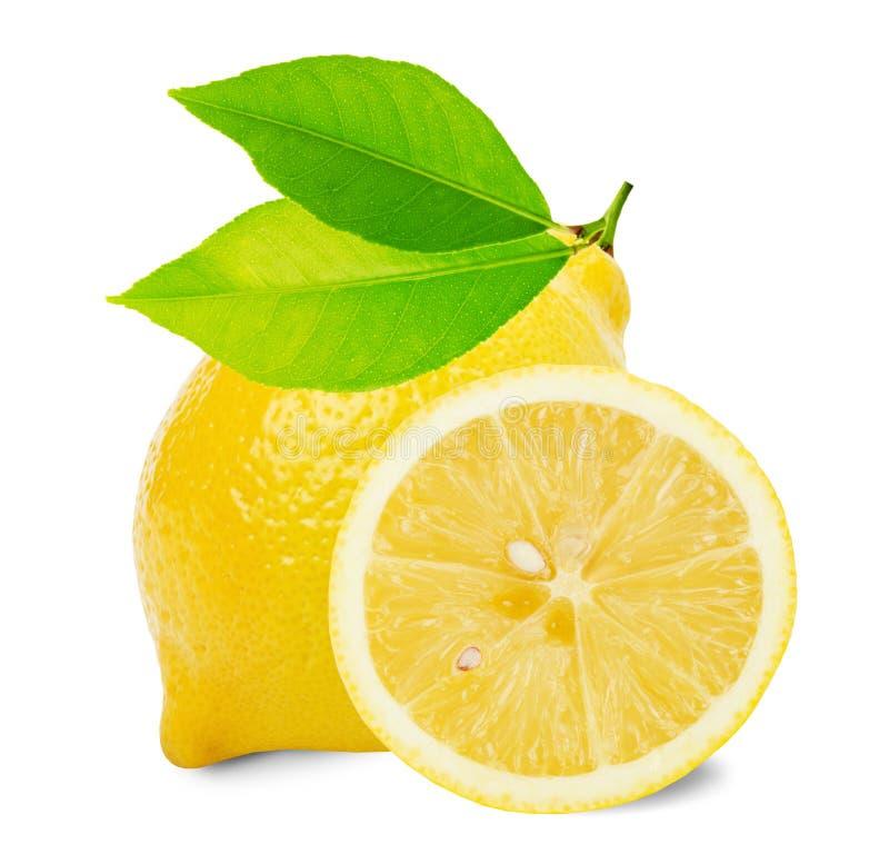 与在白色背景和切片的柠檬隔绝的叶子 库存照片
