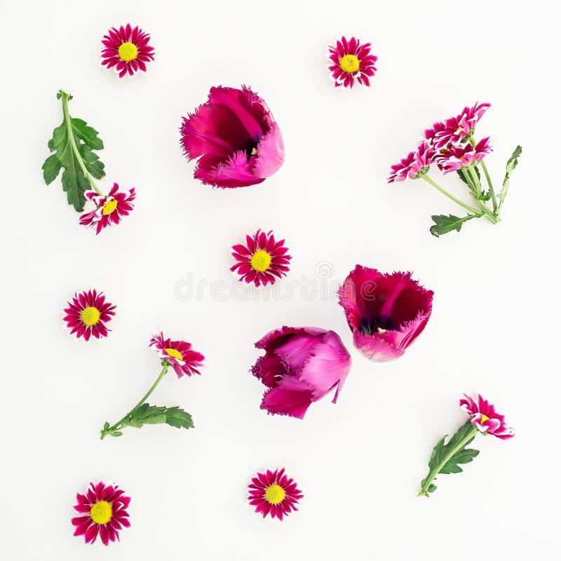 与在白色背景和叶子的样式隔绝的花、分支 平的位置,顶视图 库存图片