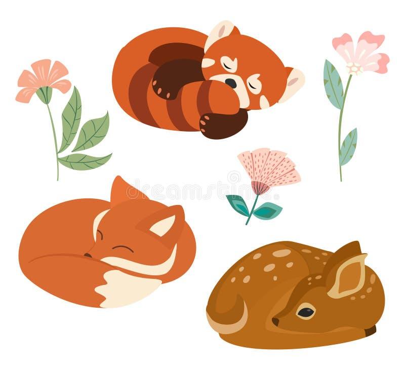 与在白色背景和鹿的逗人喜爱的传染媒介例证隔绝的一点狐狸、红熊猫 能使用作为元素为横幅,pos 向量例证