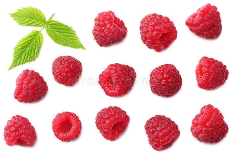 与在白色背景隔绝的绿色叶子的成熟莓 顶视图 免版税库存图片