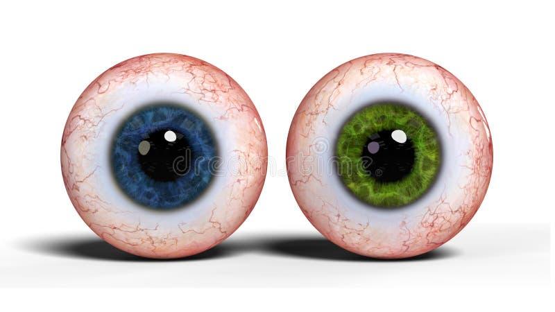 与在白色背景隔绝的蓝色和绿色虹膜的两个现实人的眼珠3d回报 向量例证