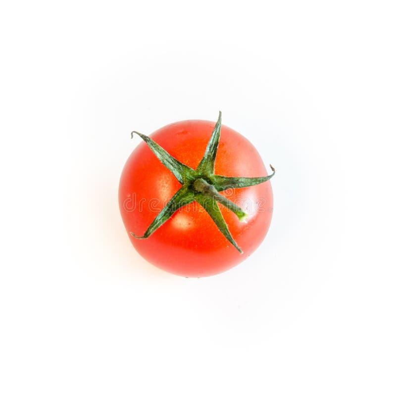 与在白色背景隔绝的词根的一个唯一西红柿 库存图片