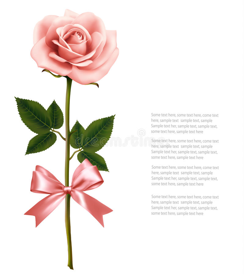 与在白色背景隔绝的弓的唯一桃红色玫瑰 库存例证