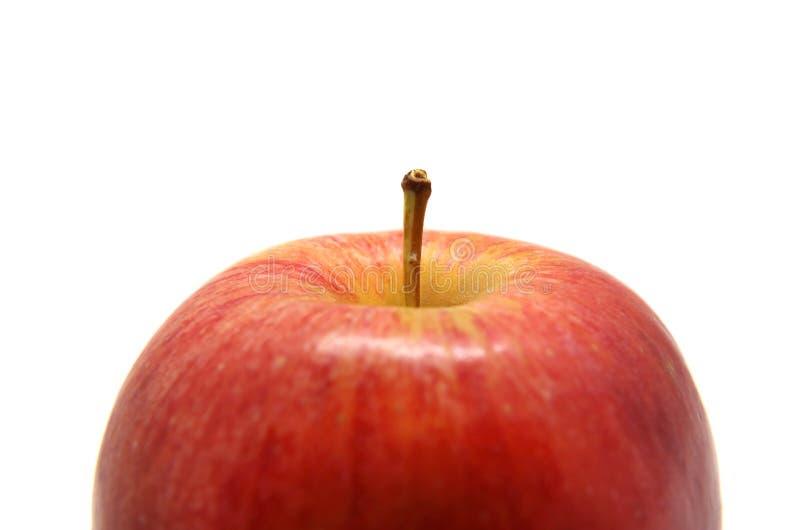 与在白色隔绝的对象的把柄宏观照片的成熟红色苹果计算机 图库摄影