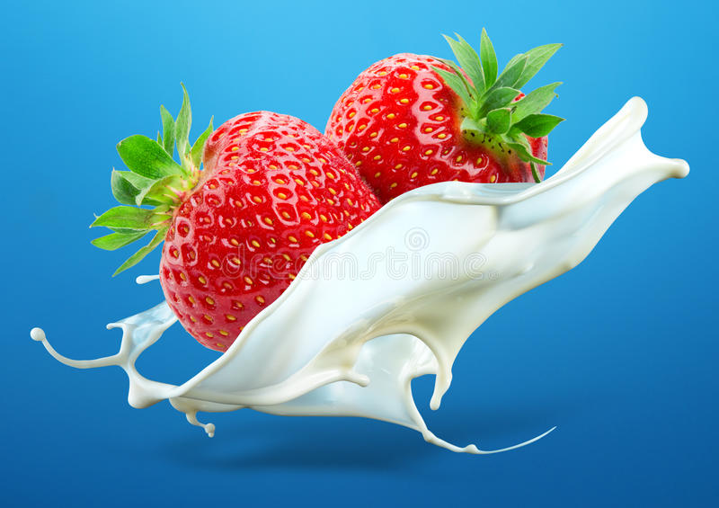 与在蓝色backg隔绝的牛奶飞溅的两个草莓 免版税库存图片