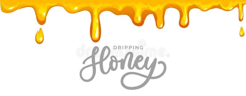 与在题字上写字的滴下的蜂蜜背景 在卡片,包装的等的白色背景隔绝的动画片蜂蜜 ?? 库存例证