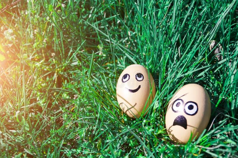 与在绿草的拉长的滑稽的面孔的复活节彩蛋 2个所有时段小鸡概念复活节彩蛋开花草被绘的被安置的年轻人 免版税库存图片