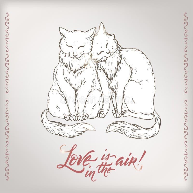 与在saing的爱上写字的两把猫和刷子的华伦泰浪漫卡片在天空中 皇族释放例证