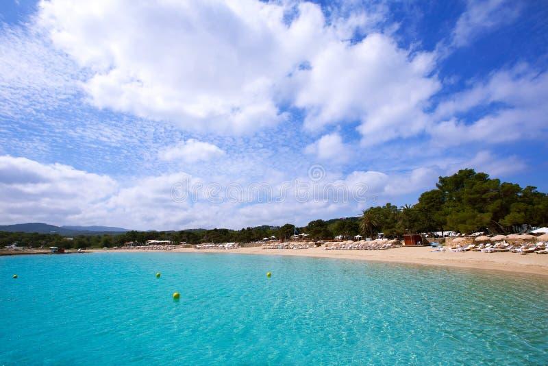 与地中海的绿松石的Ibiza Cala Bassa海滩 库存照片