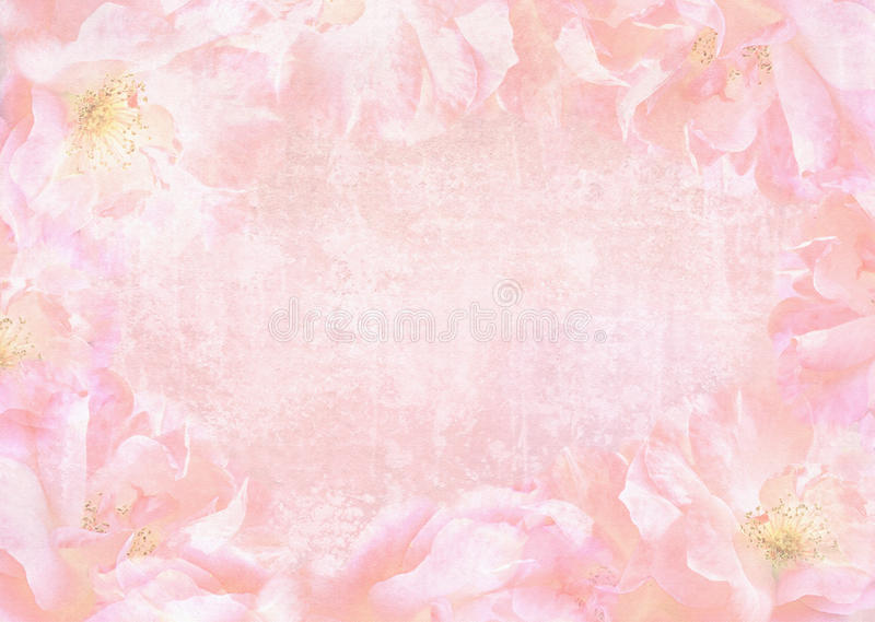 与地方的美好的抽象玫瑰背景您的文本的 库存例证