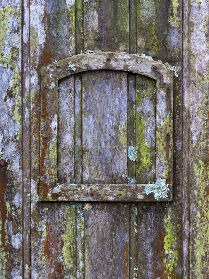 与地衣和青苔的老木门和一个小框架-垂直的背景纹理 免版税库存图片