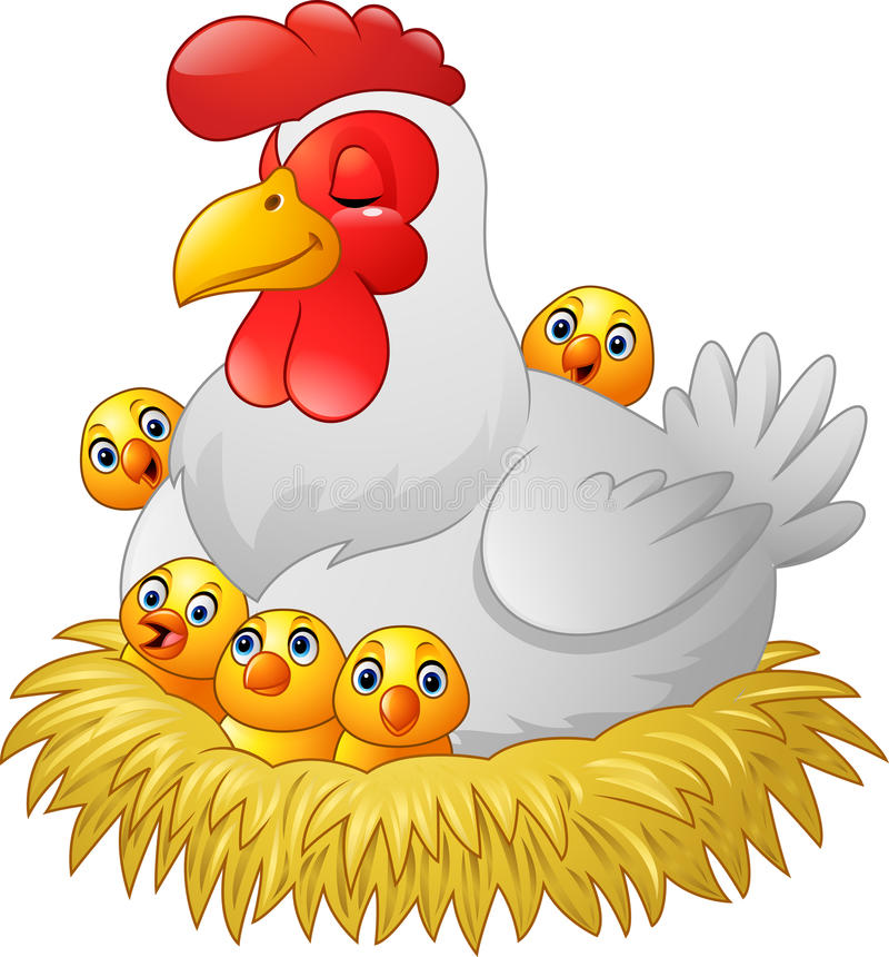 中班音乐母鸡孵蛋教案图片