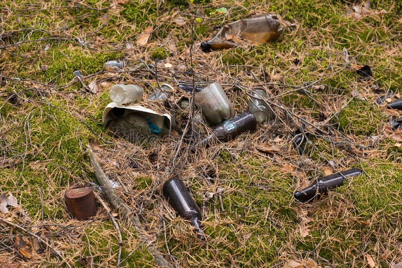 与垃圾塑料瓶,玻璃瓶,金属罐头的森林污染 免版税库存照片