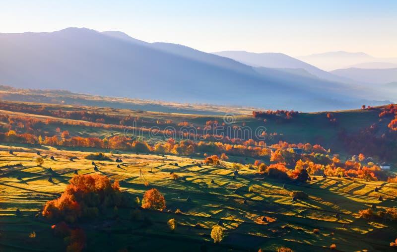 与城市的美妙的风景有领域和干草堆的 与色的叶子的果树 高加索高山ossetia tsey 免版税库存图片