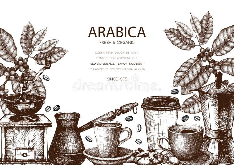 与墨水手拉的咖啡例证的传染媒介设计 有叶子和果子剪影的阿拉伯咖啡植物 咖啡馆的葡萄酒模板或 向量例证