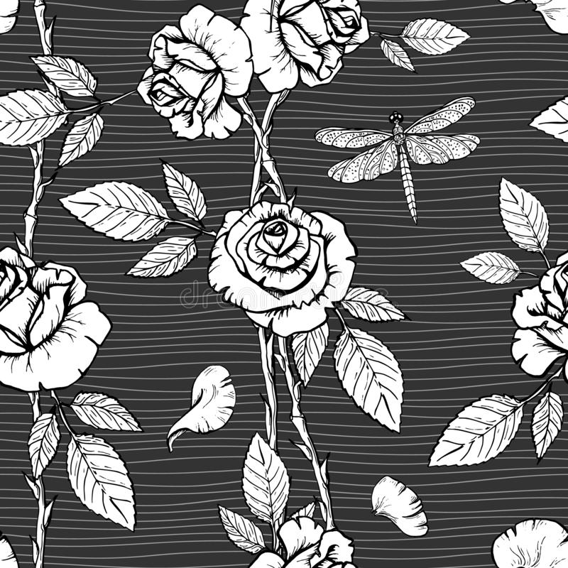与墨水手拉的玫瑰和蜻蜓的传染媒介花卉无缝的样式在黑暗的镶边背景 向量例证