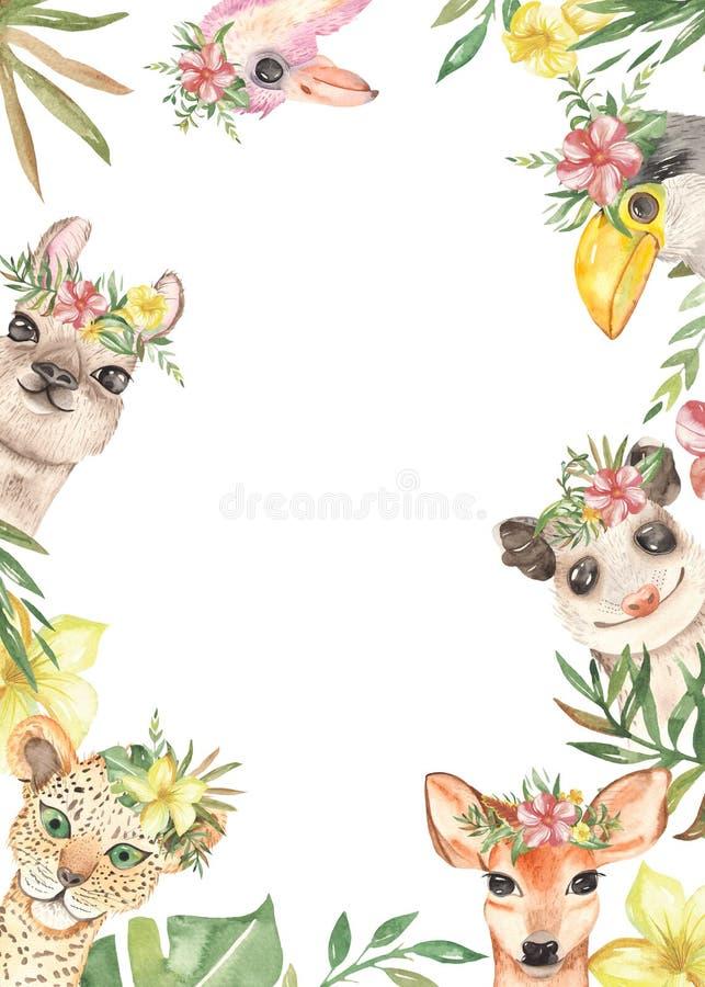 与墨西哥逗人喜爱的动画片动物、植物和帽子的水彩长方形框架 向量例证