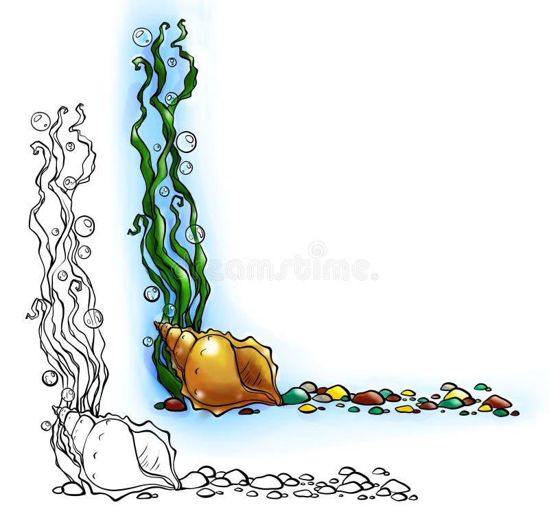 与壳和海藻的海边界 向量例证