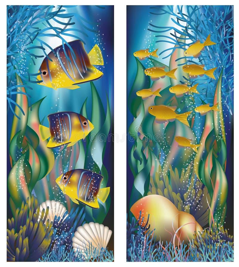 与壳和热带鱼的水下的横幅 库存例证