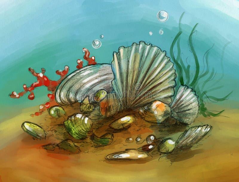 与壳和珊瑚的水下的静物画 库存例证