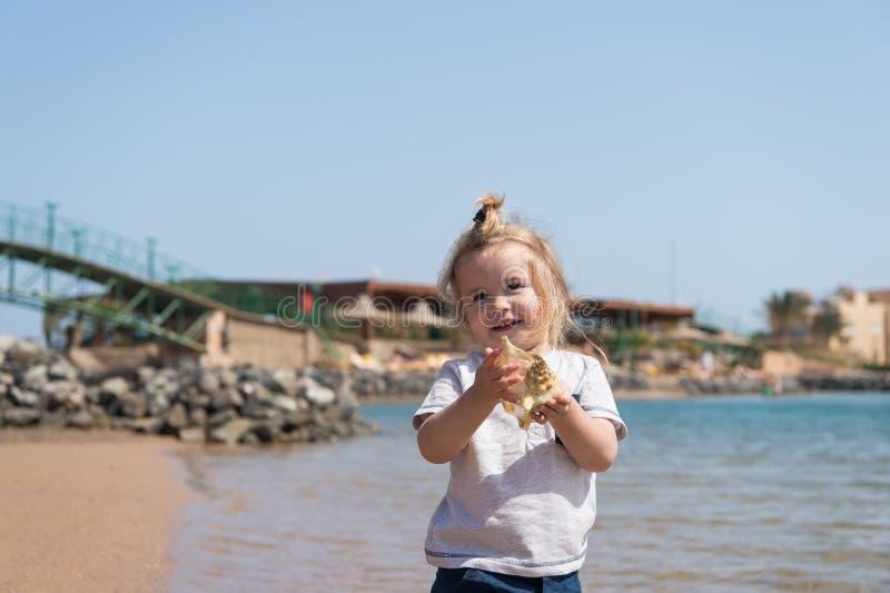 与壳的小男孩微笑在海海滩 与贝壳的儿童游戏在晴朗的海景 自由、发现和冒险 夏天vac 库存图片