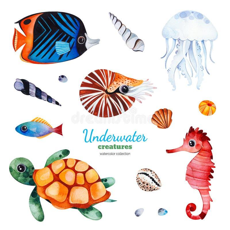 与多彩多姿的珊瑚鱼的水彩汇集 向量例证