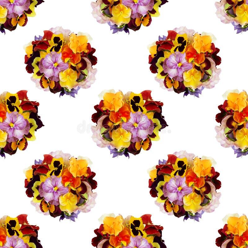 与多彩多姿的蝴蝶花的美好的花卉无缝的背景 库存图片