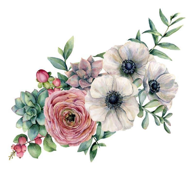 与多汁植物、毛茛属和银莲花属的水彩花束 手画花、eucaliptus叶子和多汁分支 库存例证