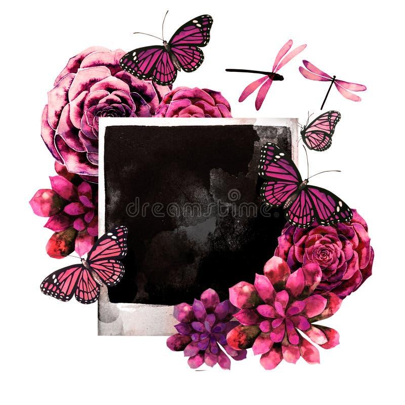 与多汁植物和照片的水彩设计, 皇族释放例证