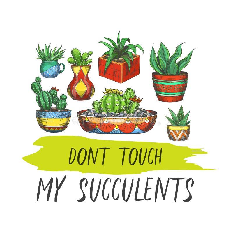 与多汁植物的标志用仙人掌或横幅 库存例证