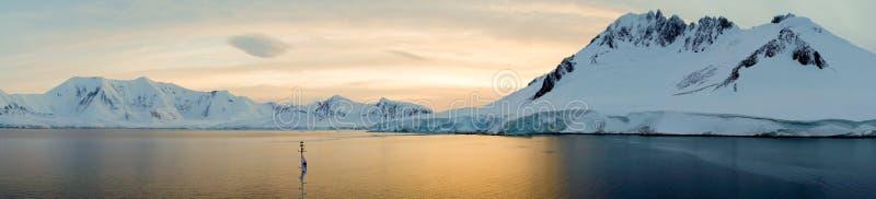 与多雪的山的多利安人的海湾风景在日出期间在南极洲 免版税图库摄影