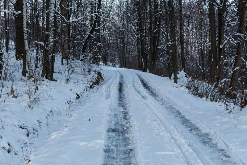 与多雪的树和雪上电车道路的冬天风景 免版税库存照片