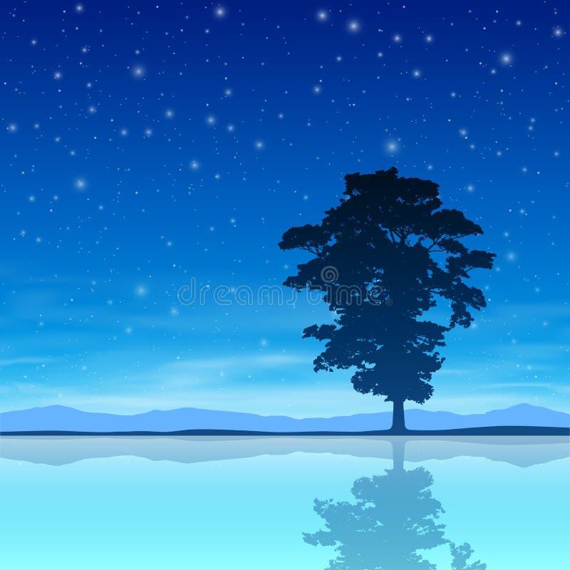 与夜空的树 皇族释放例证