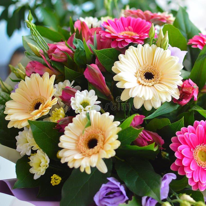 与大丁草的美丽的五颜六色的花束 图库摄影