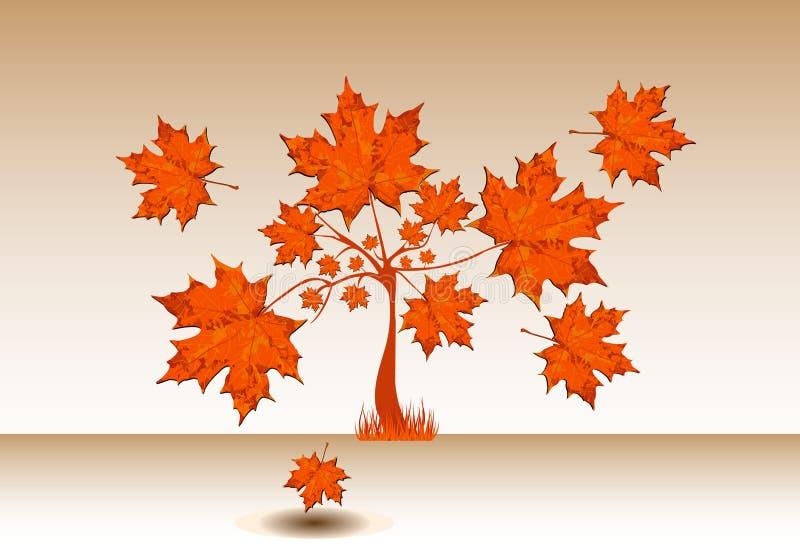 与大叶子的秋季槭树 库存图片
